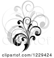 Clipart Of A Black Flourish With A Shadow 5 Royalty Free Vector Illustration