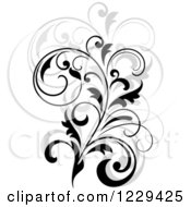 Clipart Of A Black Flourish With A Shadow 7 Royalty Free Vector Illustration