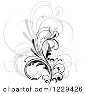 Clipart Of A Black Flourish With A Shadow 6 Royalty Free Vector Illustration