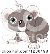 Clipart Of A Cute Baby Koala Smiling Royalty Free Vector Illustration by Pushkin