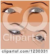 Clipart Of Female Eyes With Makeup 3 Royalty Free Vector Illustration by dero