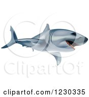 Clipart Of A Great White Shark Royalty Free Vector Illustration by dero