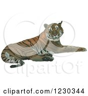 Clipart Of A Resting Tiger Royalty Free Vector Illustration by dero