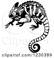 Black And White Chameleon Lizard 2