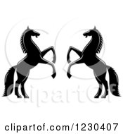 Clipart Of Two Black And White Rearing Horses 2 Royalty Free Vector Illustration