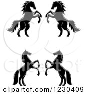 Clipart Of Black And White Rearing Horses Royalty Free Vector Illustration