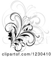 Clipart Of A Black Flourish With A Shadow 10 Royalty Free Vector Illustration