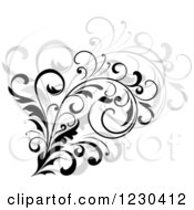 Clipart Of A Black Flourish With A Shadow 8 Royalty Free Vector Illustration