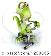 3d Green Gecko Exercising On A Spin Bike
