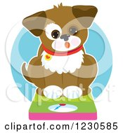Clipart Of A Surprised Chubby Dog Sitting On A Scale Royalty Free Vector Illustration