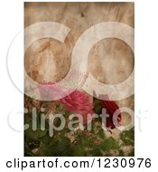 Clipart Of A Vintage Aged Paper Background With Roses Royalty Free Illustration