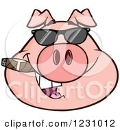 Clipart Of A Pig Head With A Cigar And Sunglasses Royalty Free Vector Illustration
