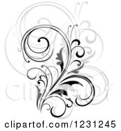 Clipart Of A Black Flourish With A Shadow 11 Royalty Free Vector Illustration