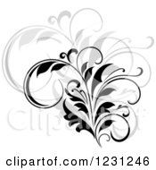 Clipart Of A Black Flourish With A Shadow 12 Royalty Free Vector Illustration