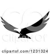 Clipart Of A Black And White Flying Bald Eagle Royalty Free Vector Illustration