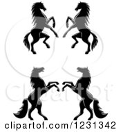 Clipart Of Black And White Rearing Horses 2 Royalty Free Vector Illustration