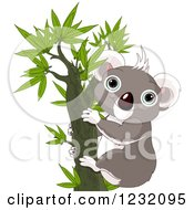 Clipart Of A Happy Koala In A Tree Royalty Free Vector Illustration by Pushkin