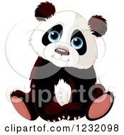 Cute Panda Cub Sitting