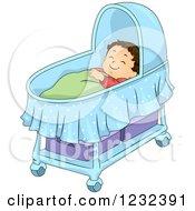 Caucasian Toddler Boy Sleeping In A Bassinet