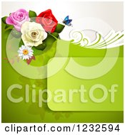 Green Frame And Background With Roses And A Butterfly