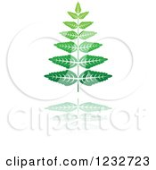 Clipart Of A Green Fern Plant And Reflection Logo Royalty Free Vector Illustration by Vector Tradition SM