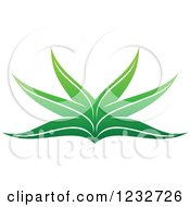 Clipart Of A Green Aloe Plant Logo Royalty Free Vector Illustration