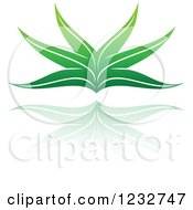 Clipart Of A Green Aloe Plant And Reflection Logo Royalty Free Vector Illustration