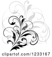 Clipart Of A Black Flourish With A Shadow 13 Royalty Free Vector Illustration