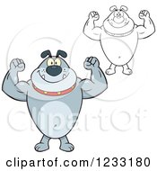 Clipart Of A Strong Gray And Outlined Bulldog Flexing His Arms Royalty Free Vector Illustration