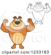 Clipart Of A Strong Brown And Outlined Bulldog Flexing His Arms Royalty Free Vector Illustration