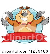 Clipart Of A Brown Bulldog Working Out With Dumbbells Over A Banner Royalty Free Vector Illustration by Hit Toon