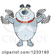 Clipart Of A Gray Bulldog Working Out With Dumbbells Royalty Free Vector Illustration by Hit Toon