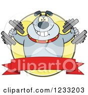 Clipart Of A Gray Bulldog Working Out With Dumbbells Over A Banner Royalty Free Vector Illustration by Hit Toon