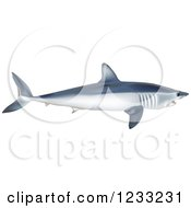 Clipart Of A Shortfin Mako Shark Royalty Free Vector Illustration