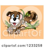 Playful Dogs With Plants Over Orange