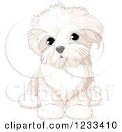Clipart Of A Cute Bichon Frise Or Maltese Puppy Dog Sitting Royalty Free Vector Illustration by Pushkin