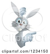 Clipart Of A Gray Bunny Rabbit Looking Around And Pointing To A Sign Royalty Free Vector Illustration