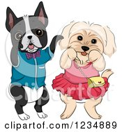 Boston Terrier And Dog Dessed In Clothes