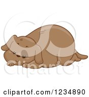 Clipart Of A Chubby Sleeping Brown Dog Royalty Free Vector Illustration