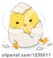 Clipart Of A Yellow Chick Breaking Out Of A Shell Royalty Free Vector Illustration by BNP Design Studio