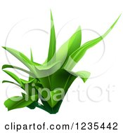 Clipart Of A Green Plant 4 Royalty Free Vector Illustration
