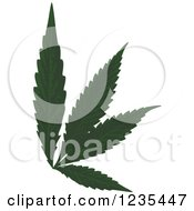 Clipart Of A Marijuana Leaf Royalty Free Vector Illustration