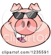 Clipart Of A Smiling Pig Head With Sunglasses Royalty Free Vector Illustration by Hit Toon