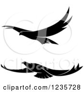 Clipart Of Black And White Flying Falcons Royalty Free Vector Illustration