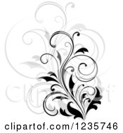 Clipart Of A Black Flourish With A Shadow 15 Royalty Free Vector Illustration