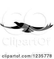 Clipart Of A Black And White Flying Falcon 2 Royalty Free Vector Illustration