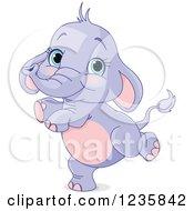 Cute Purple Baby Elephant Dancing