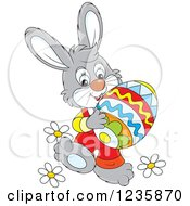 Clipart Of A Gray Male Easter Bunny Rabbit Carrying An Egg Royalty Free Vector Illustration