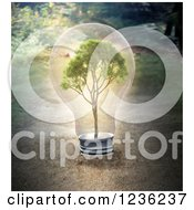 Clipart Of A 3d Tree In A Light Bulb Over Dirt Royalty Free CGI Illustration