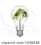 Clipart Of A 3d Tree In A Light Bulb Over White Royalty Free CGI Illustration